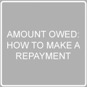 how to make a repayment post image