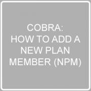add an npm